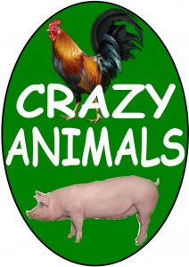 LOGO CRAZY ANIMALS (1)